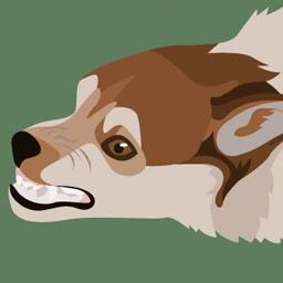 Le chien et les idées reçues