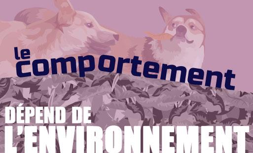L'influence de l'environnement