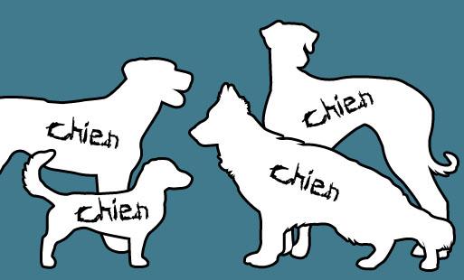 Tous les chiens sont les mêmes !