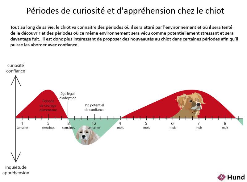 Age Dadoption Pourquoi Les Avis Divergent