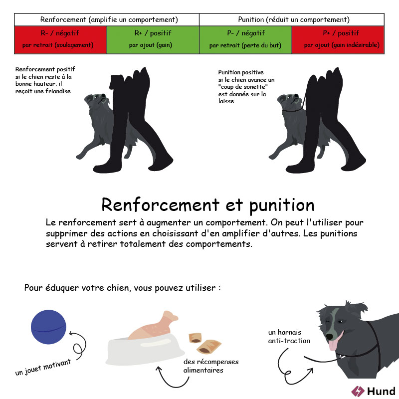 renforcement