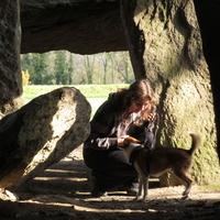 Chien Norvégien de macareux - Fenris