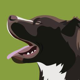 Le chien et les idées reçues 2