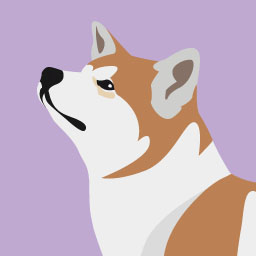 Le chien et les idées reçues 3