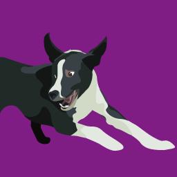 Comportement canin niveau 1