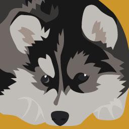 Comportement canin niveau 2