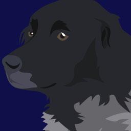 Comportement canin niveau 3