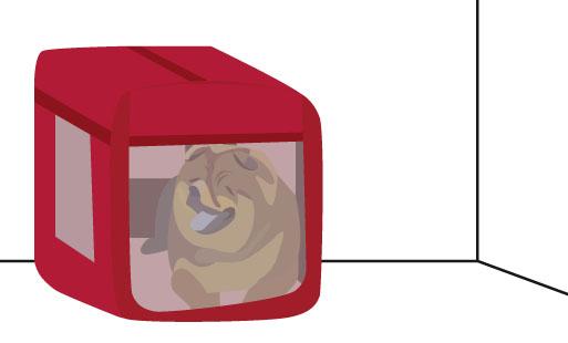 Mettre un chien dans une cage ?
