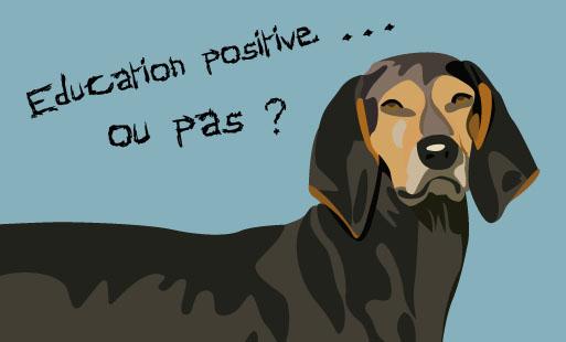 Quand on décide d'aller voir un éducateur canin o…