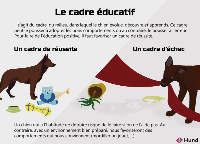 education positive cadre de reussite
