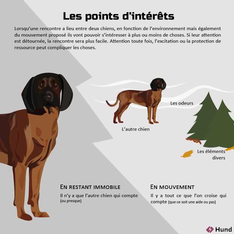 les points interessants
