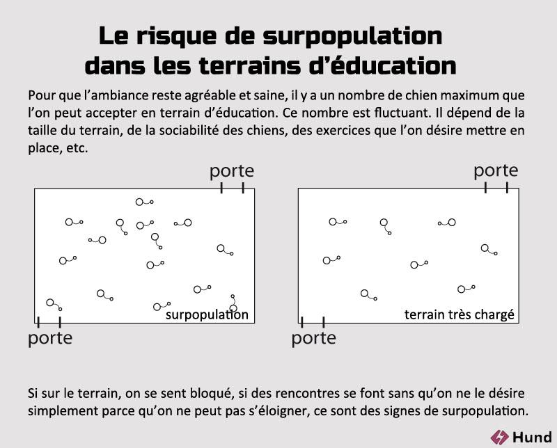 Terrain education surpopulation