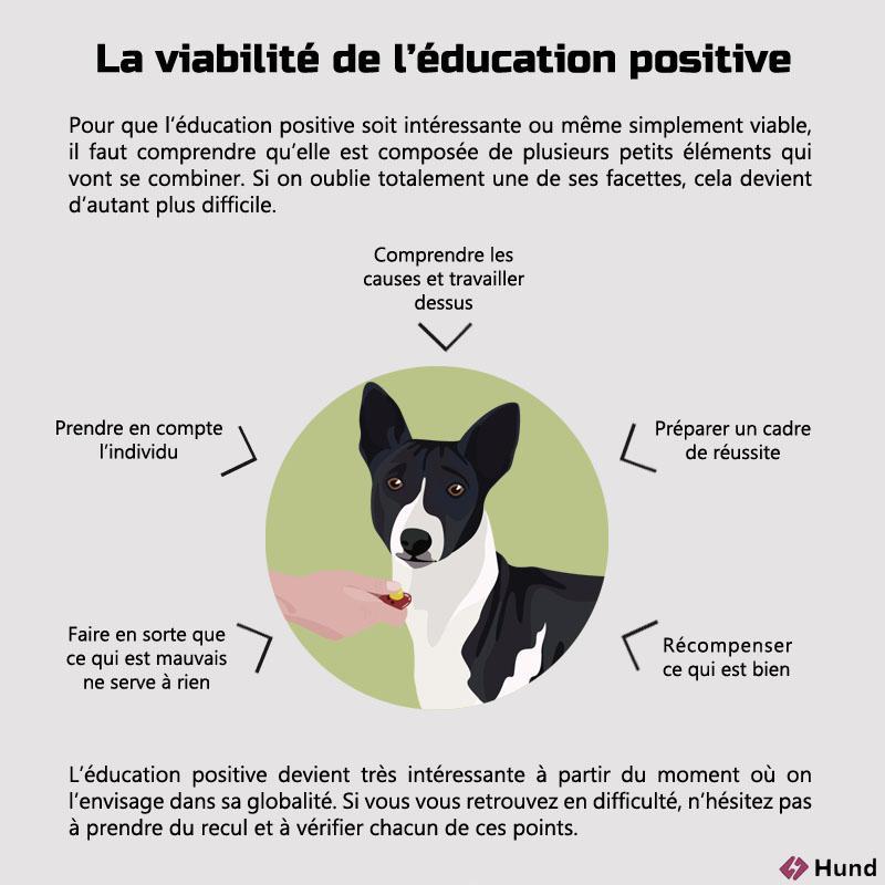 education positive schema