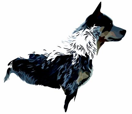 Formation Hund.fr