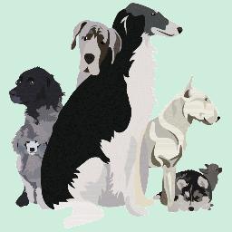 Toutes les races de chiens